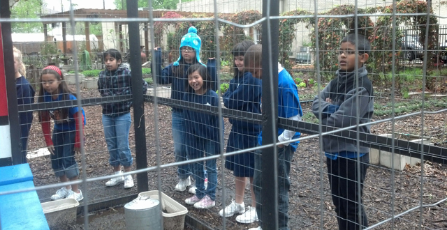 St. Pius X Catholic School on a field trip at the Lab at Lakewood