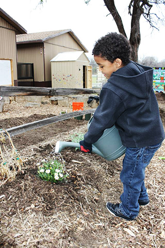 Kaden Ballard waters the garden at Sanger Elementary, which is growing into a middle school. Modular buildings will act as classrooms until funding is allocated for a new wing: Photo by Patty Bates-Ballard