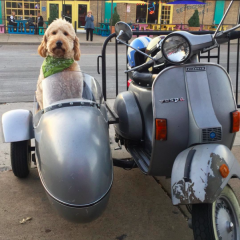 The Vespa from Kyle's Scooter Shop in East Dallas (photo from Instagram)
