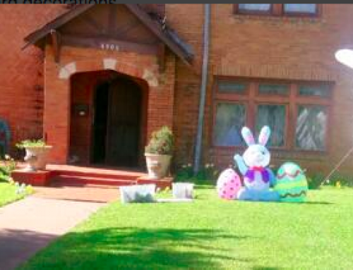 Hop to this Swiss Avenue neighbor's yard to take Easter Bunny photos