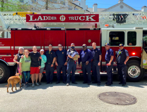 Dog trapped under SUV adopted by firefighter who rescued her