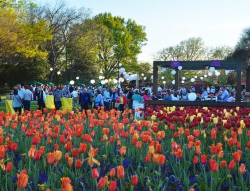 Don your flapper dresses and dapper hats for the Arboretum's Food and Wine Festival